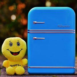 Nos conseils d'achat pour choisir un mini frigo